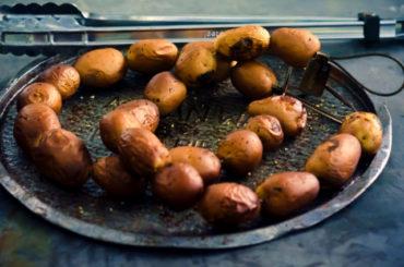 Grillnadeln aus Edelstahl, Spieße zum Grillen und Backen.