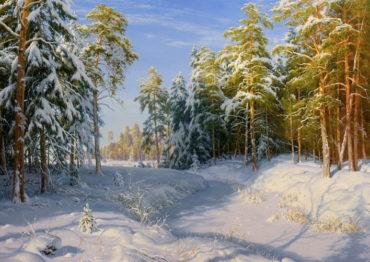 zima priroda Zima - Plagáty, Obrazy a Fotografie
